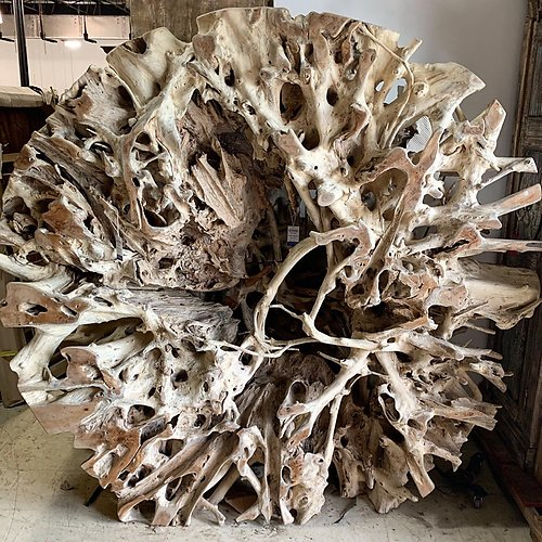 Teak Root Wall Scuplture